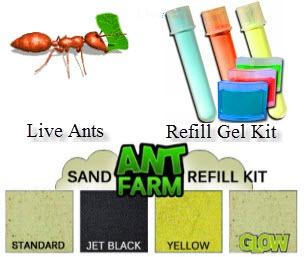 ant farm gel colony instructions